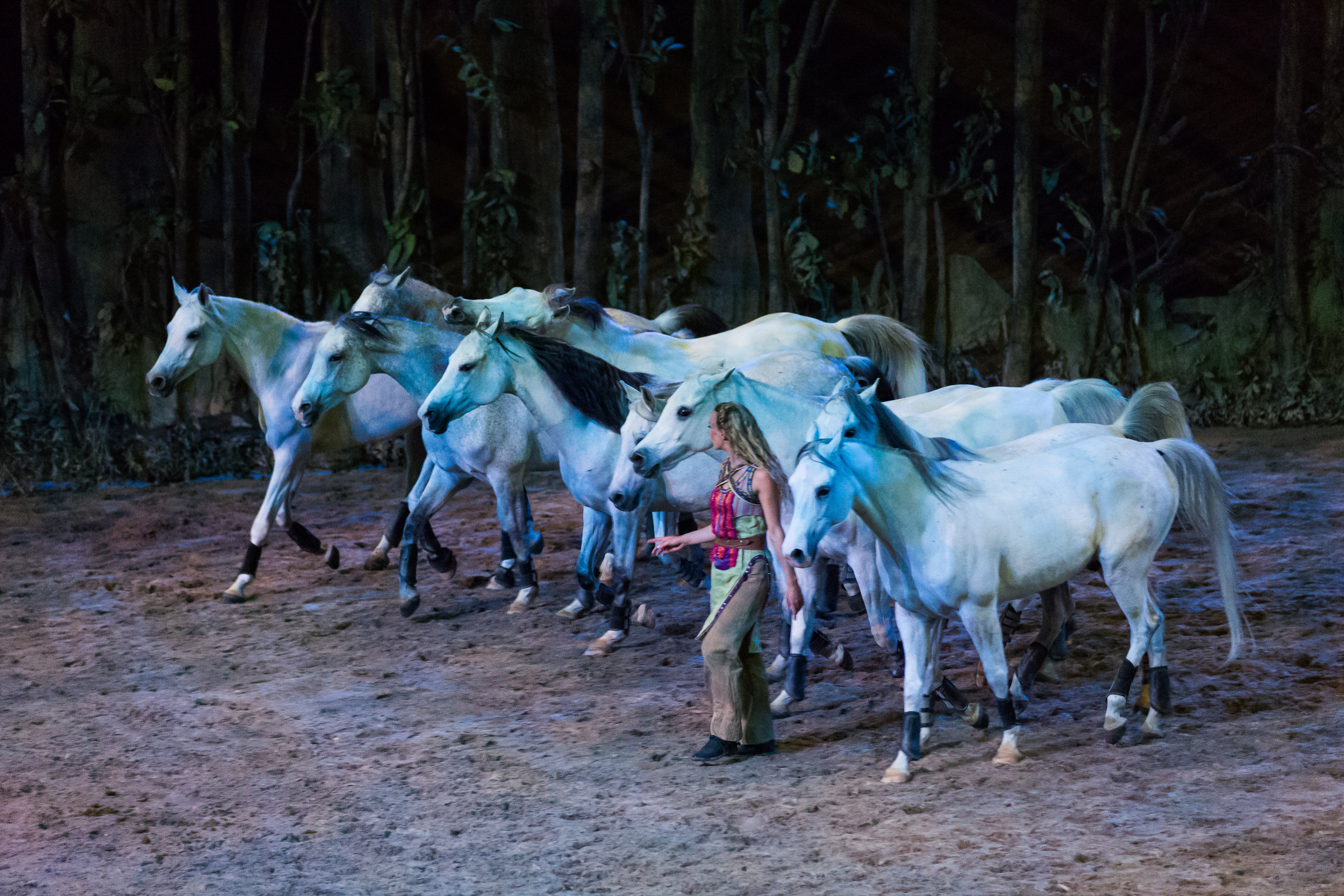 Chicago, IL - Odysseo by Cavalia - Opening Night 5.jpg