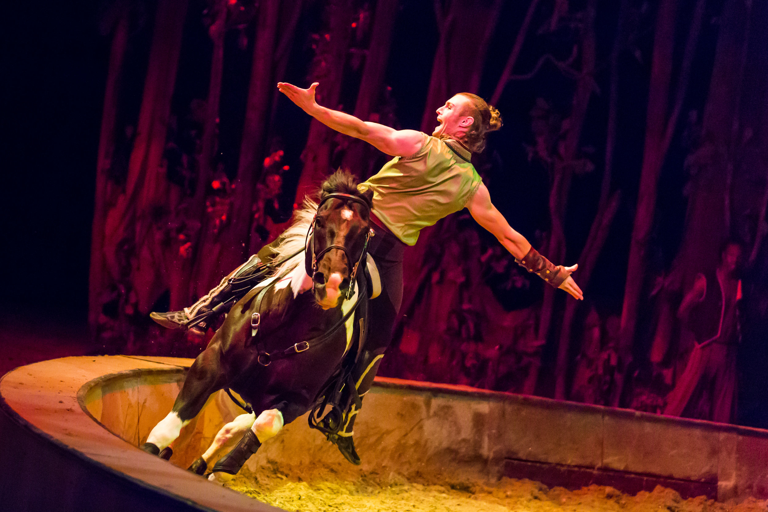 Chicago, IL - Odysseo by Cavalia - Opening Night 8.jpg