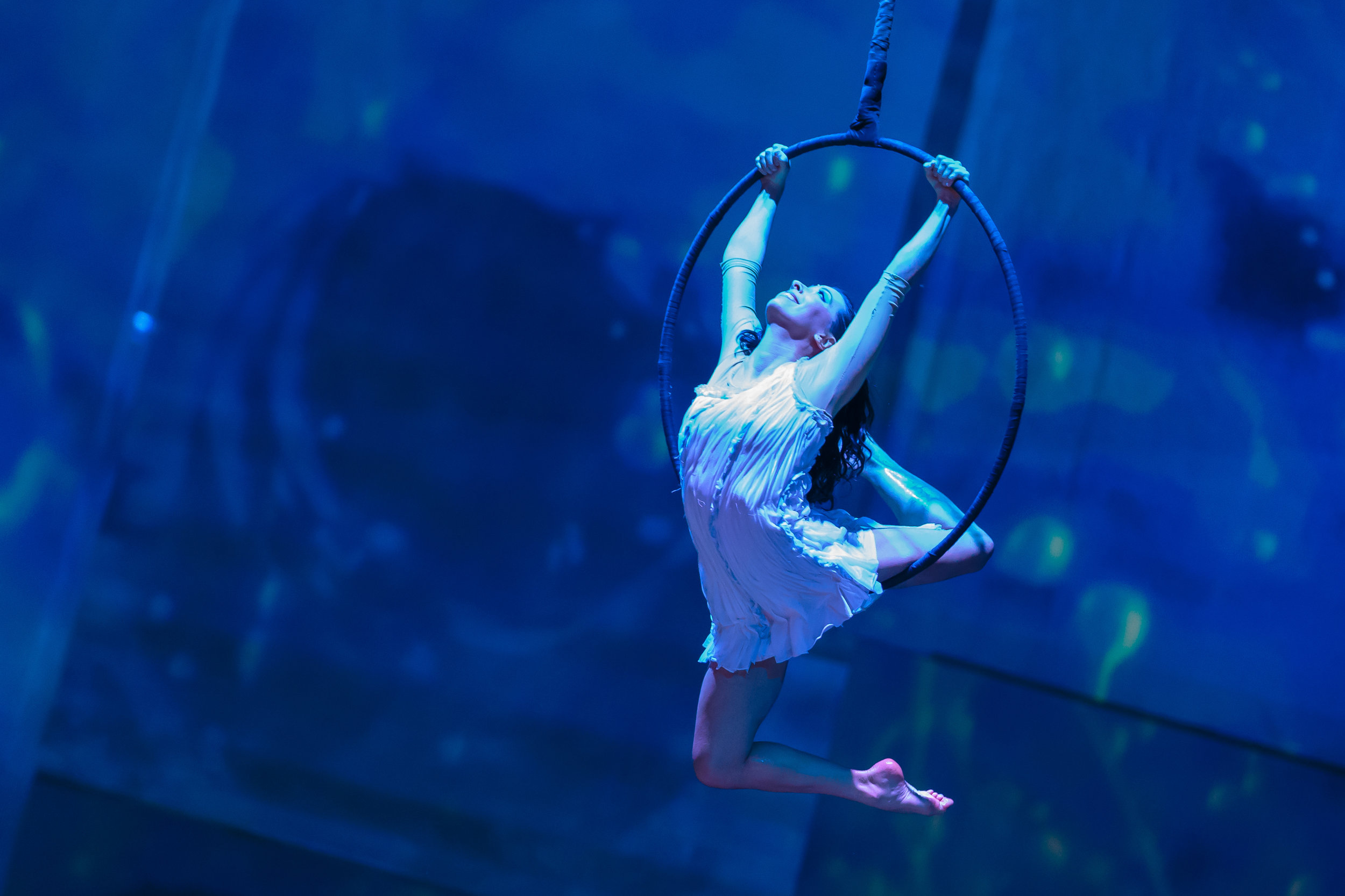 Chicago, IL - Odysseo by Cavalia - Opening Night 11.jpg