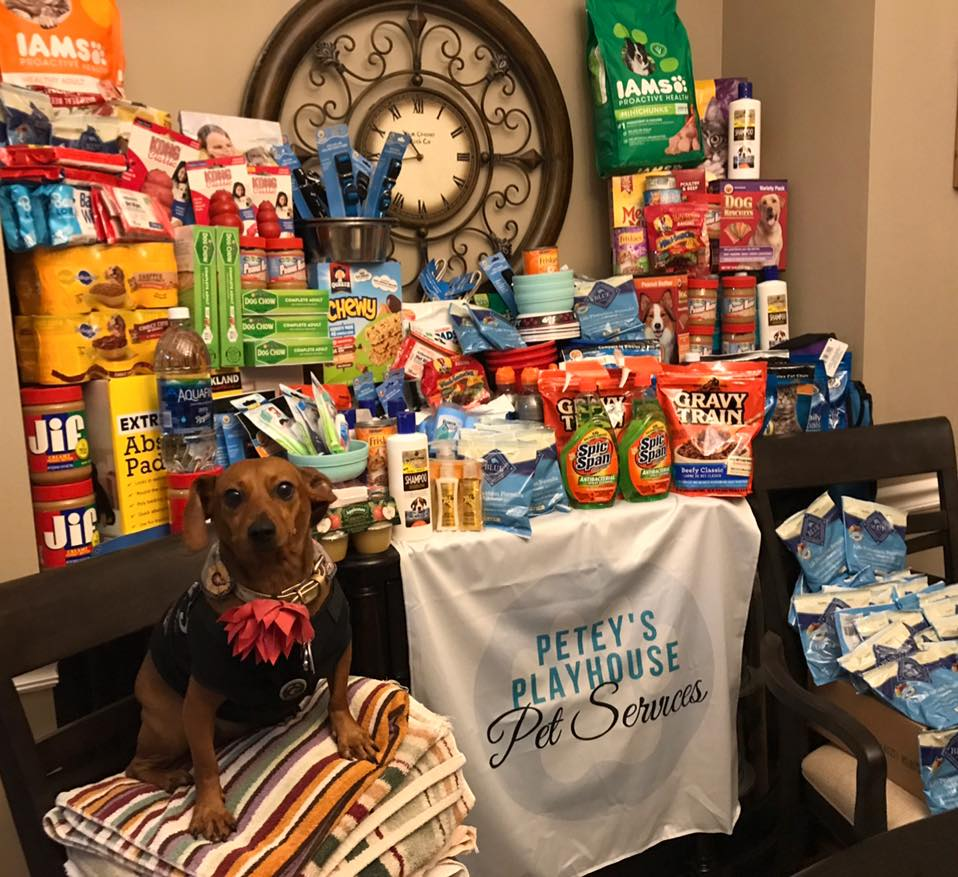 #peteysLOVETEXAS - PETEY'S collected donations and designed WiZARD of PAWz shirts that raised more than $340.00 in one week for the local Hurricane Harvey Animal Rescue and Recovery trip that left on September 2017.