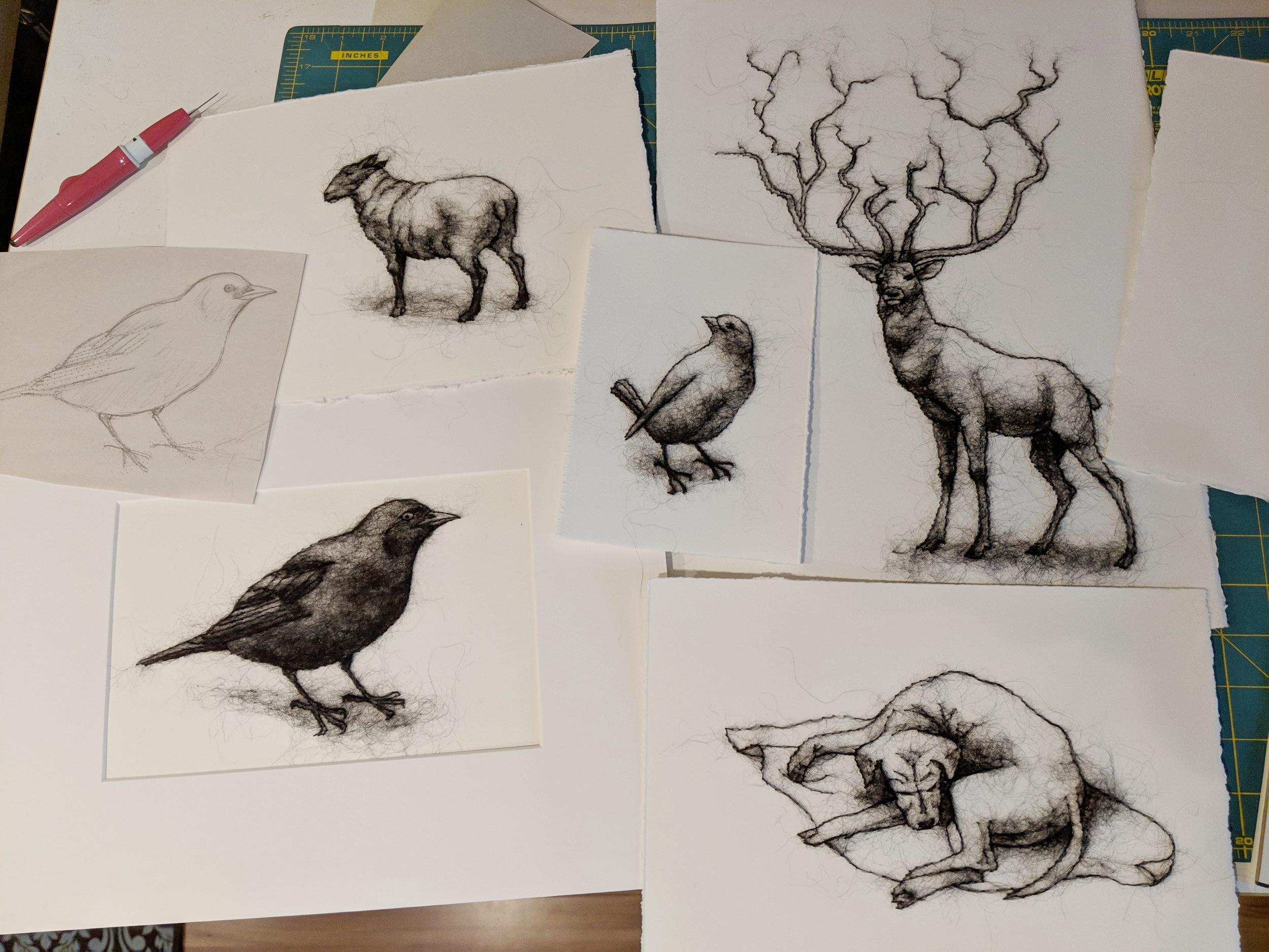 Wool drawings.jpg