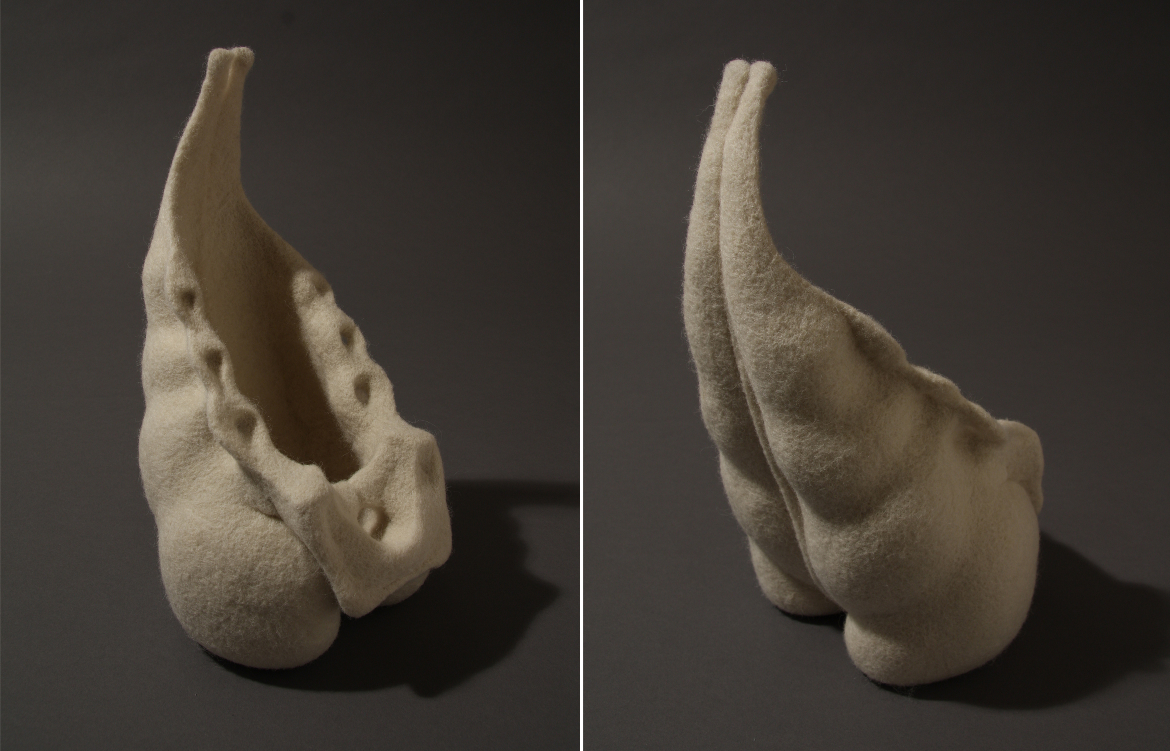 Flesh & Bone Study #3 (Sacrum/Vessel), one of the works included in Figurative Fiber.