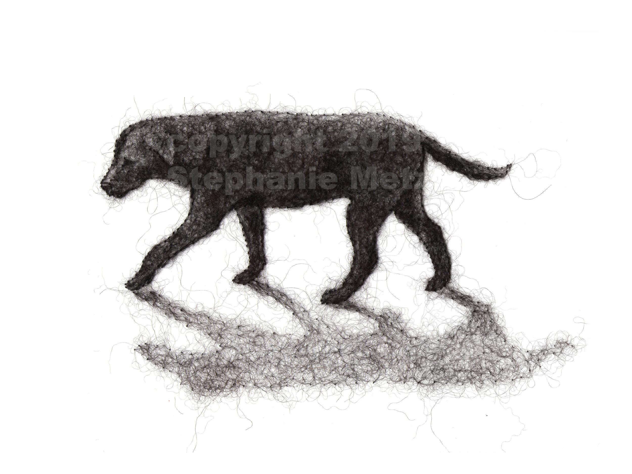 Lab Stroll Archival Print of Wool Drawing ($75 Pledge)