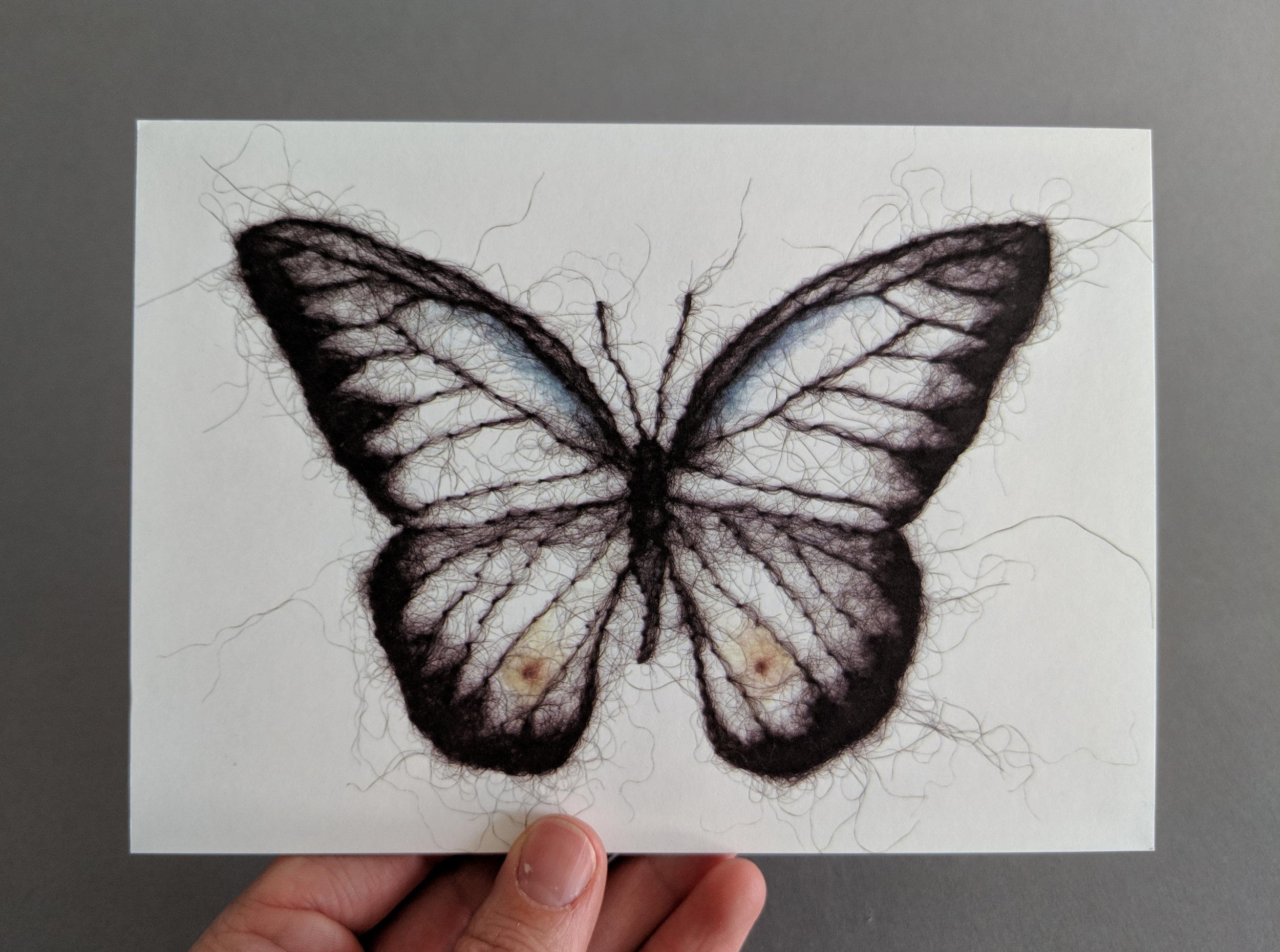 5 x 7 Butterfly Postcard Art Print ($20 Pledge)