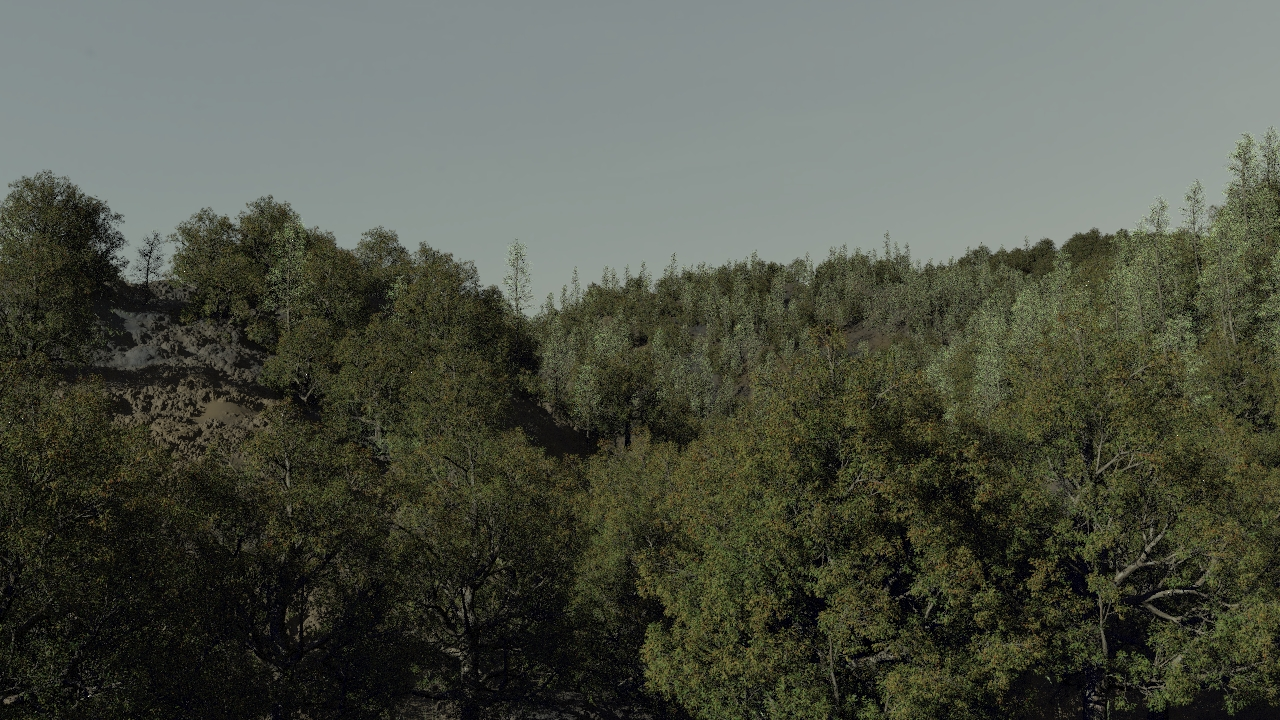 Houdini Forest Test