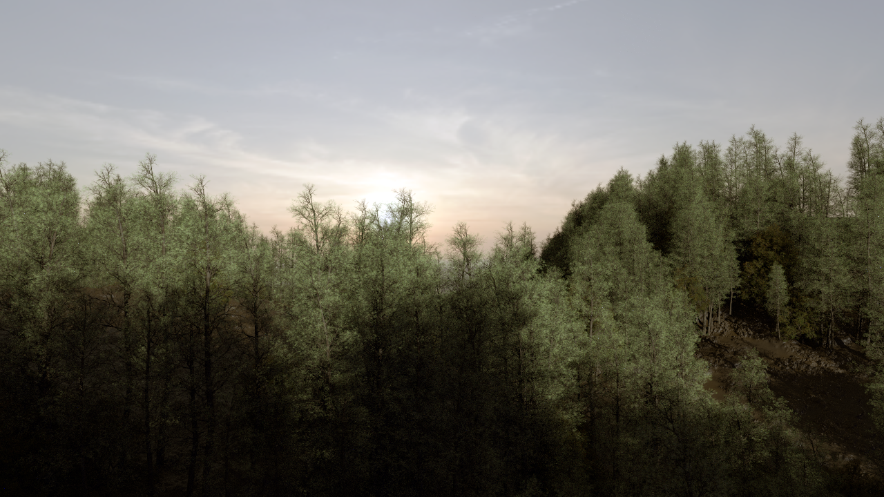 Houdini Procedural Forest with Speedtree