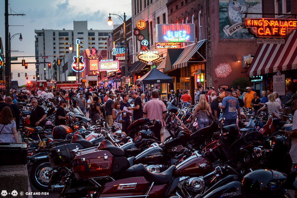 Bike night on Beale Street 0051-XL.jpg