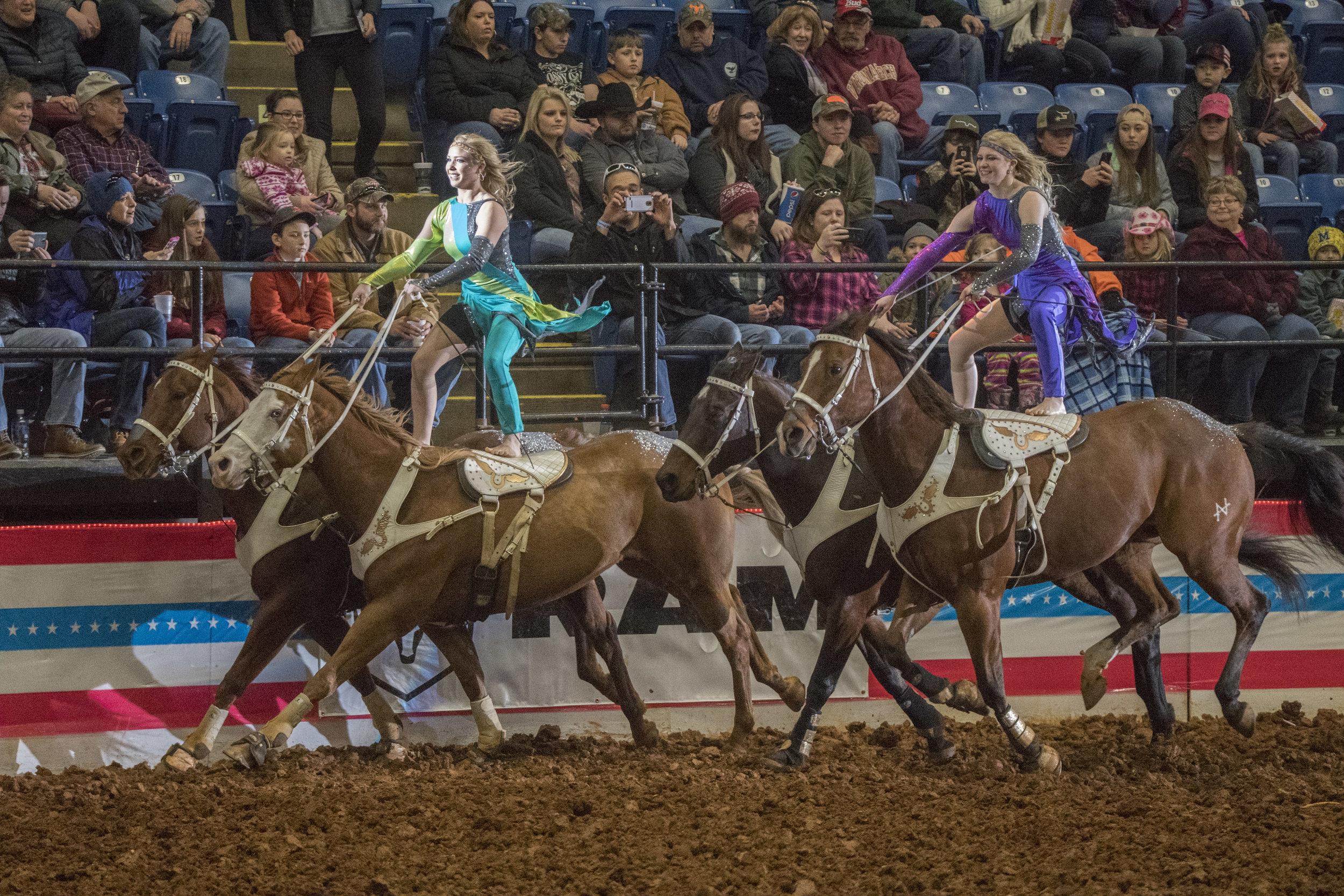 Salem Stampede rodeo 2017