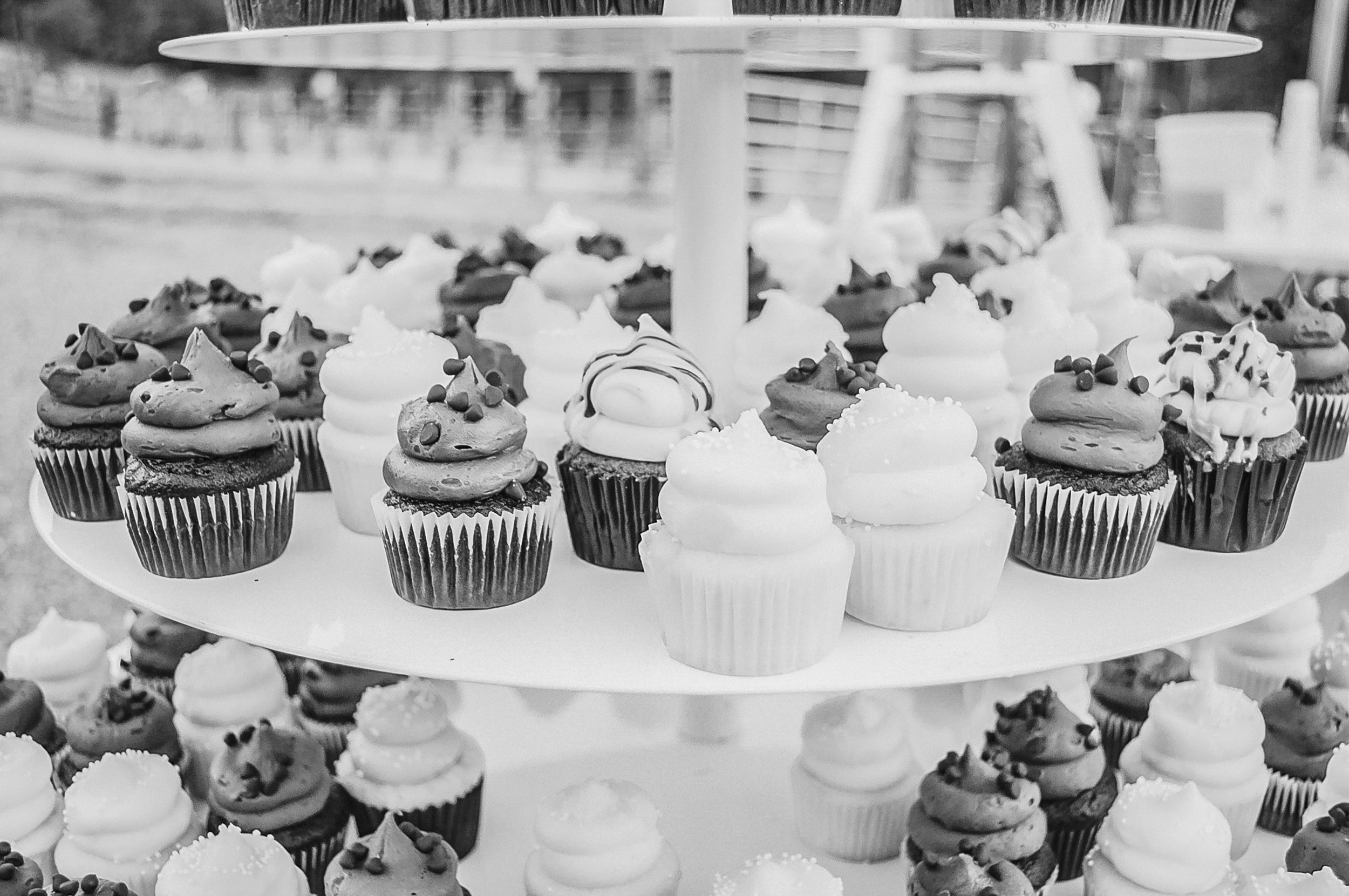 Holly Springs, NC The Family Farm Wedding Photographer, Jamestown, NC Cupcakes