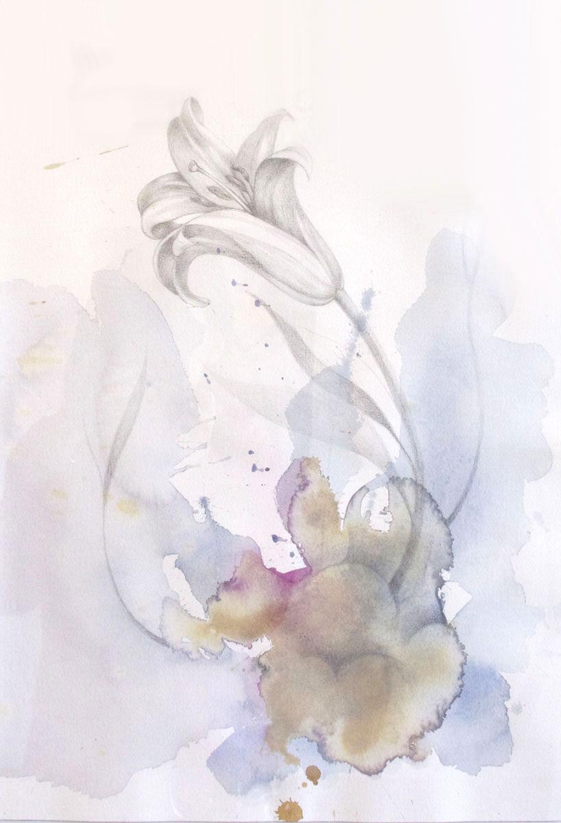 Untitled (Lillie Flower)