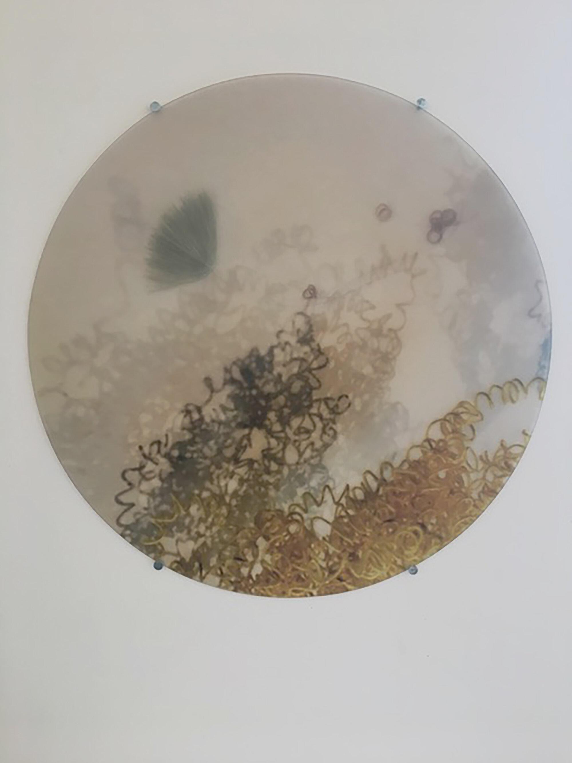 Moon Shadow Discs