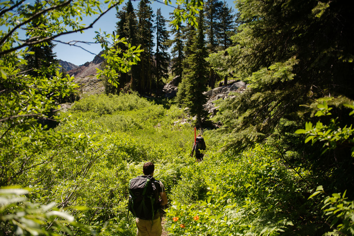Backpacking up the Swift Creek Trail in the Trinity Alps Wilderness.