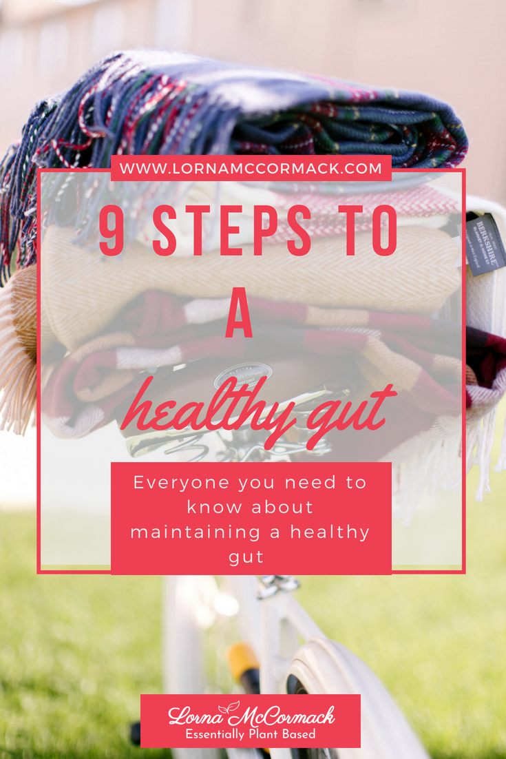 Pin Blog 9 steps to a healthy gut, gut health, tummy trouble.png