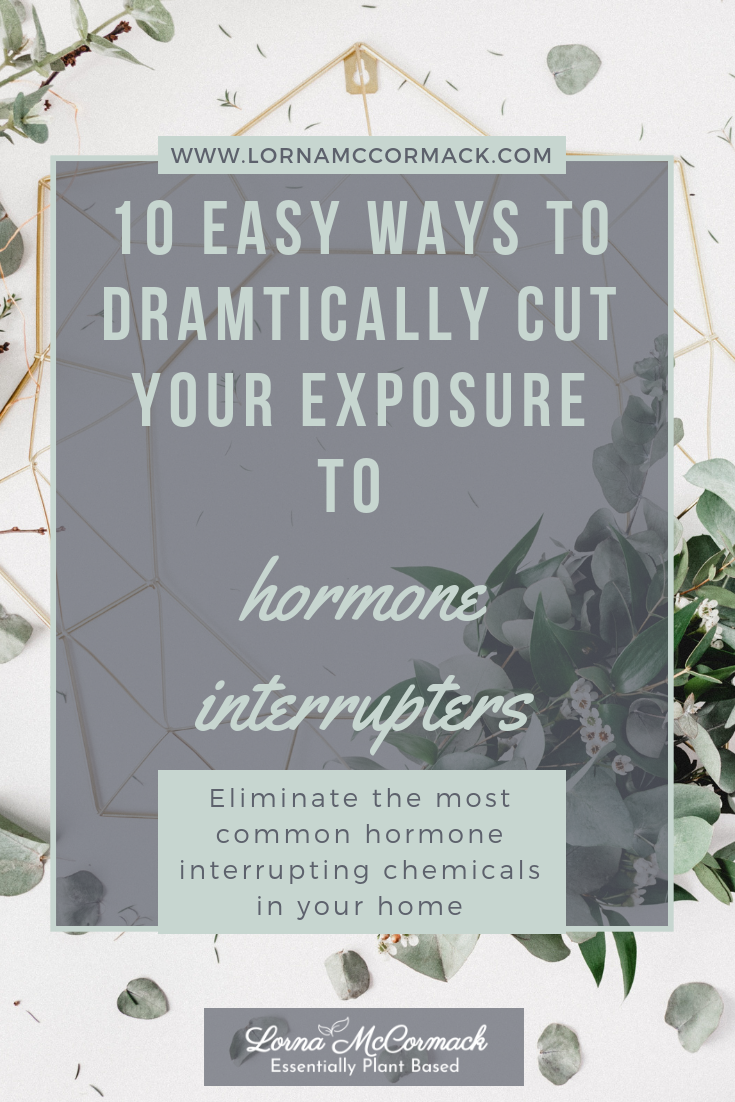 Pin Blog 20.1 easy ways to reduce your exposure to hormone interrupting chemical in your home.png