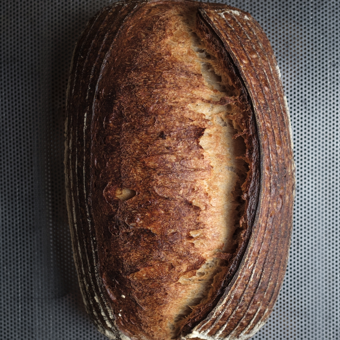 pHlour loaf - batard