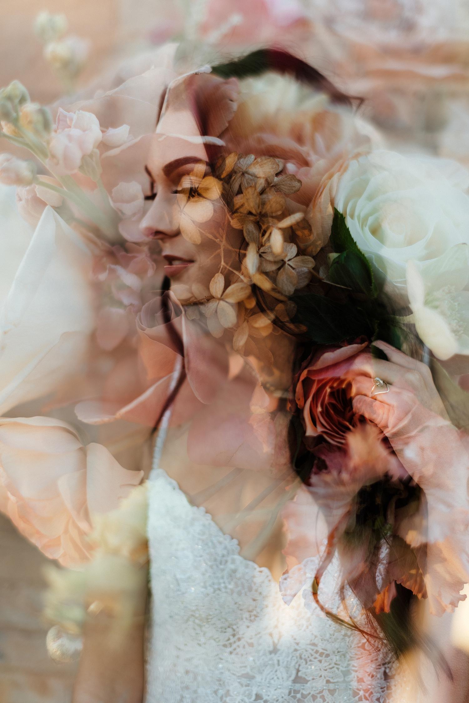 Zandra Barriga Photo - Potted Pansy 1 on 1_0011.jpg