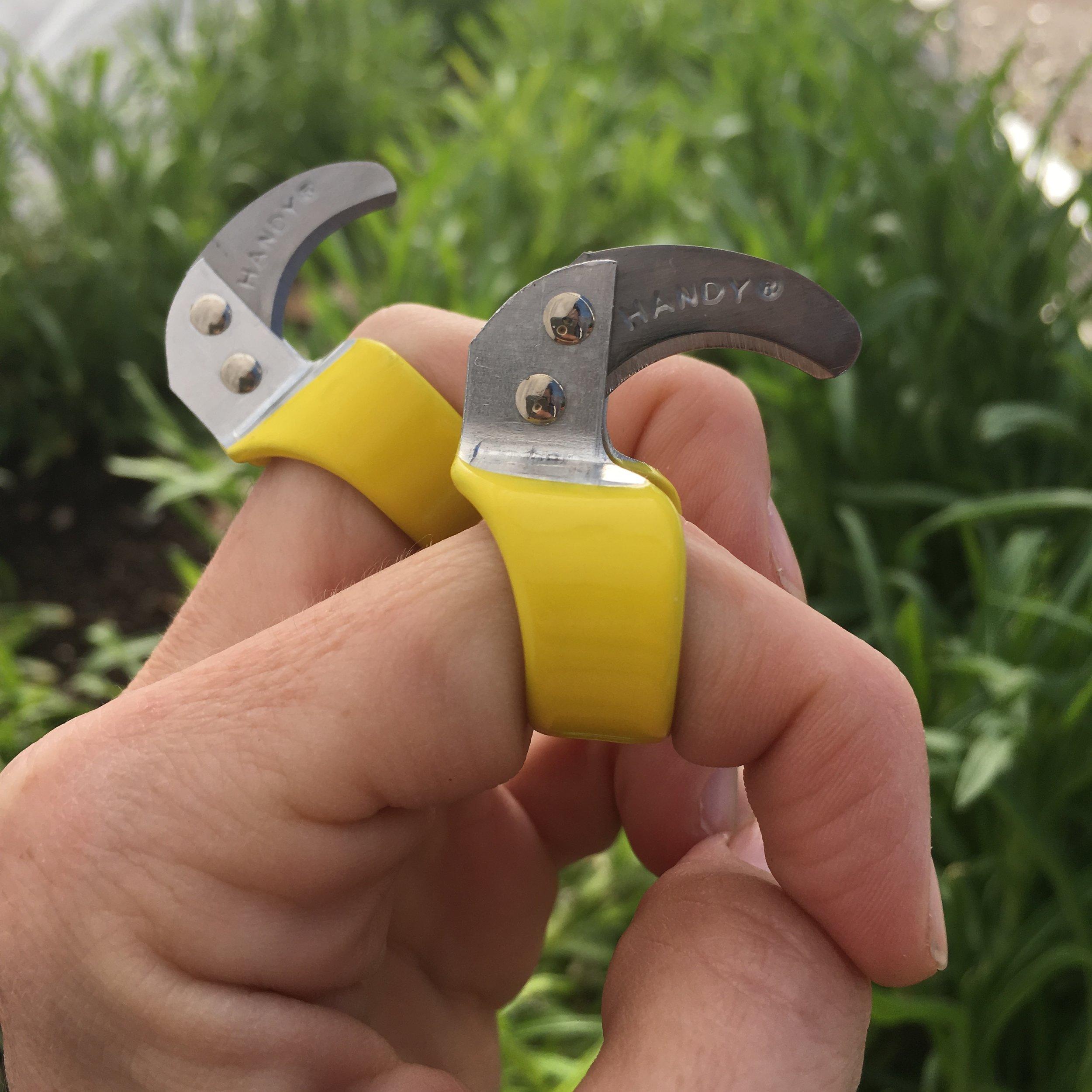 ring knives