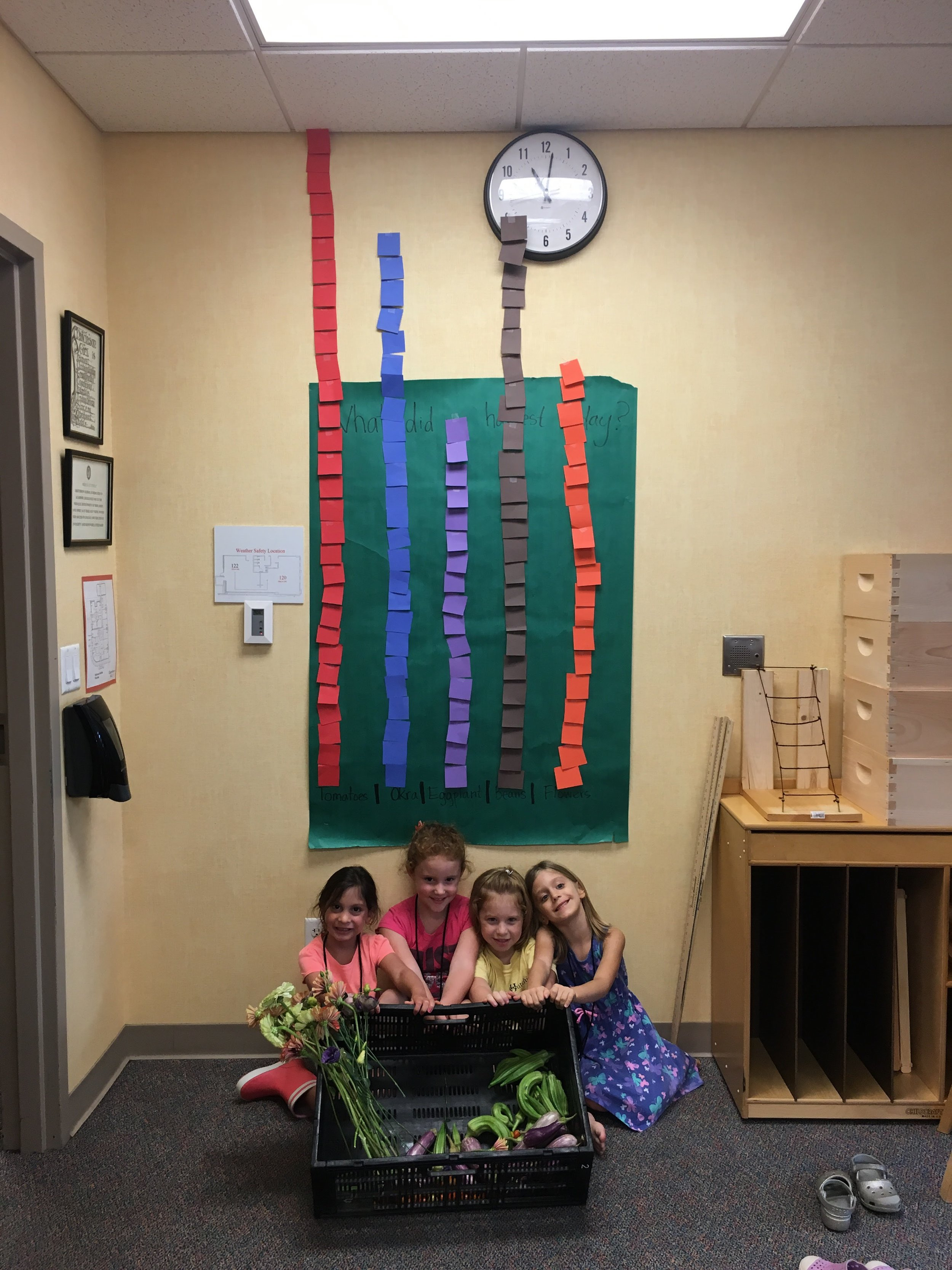 They graphed their harvest!
