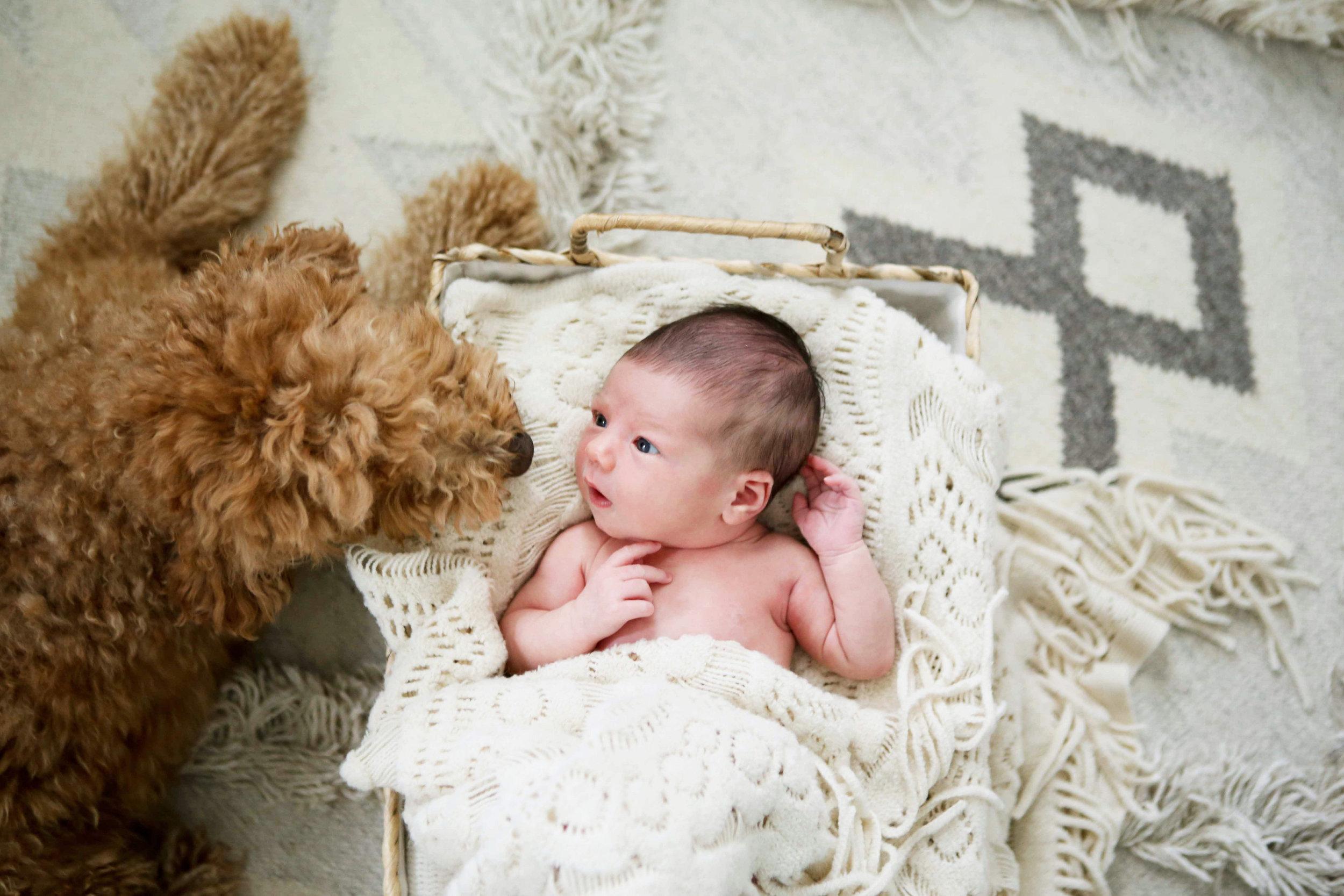 Baby Charlie-Charlie Harper-0026.jpg