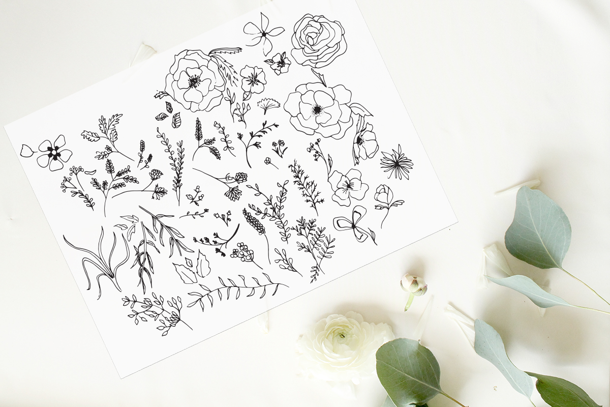 Floral botanical line art sketches for baby milestone cards