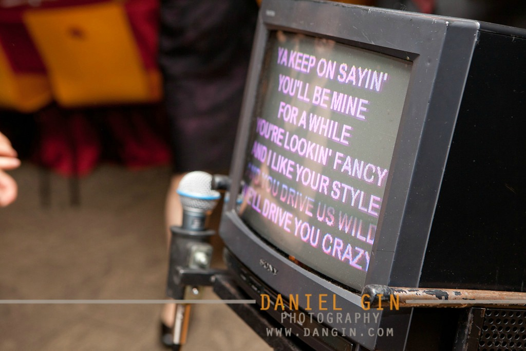 12 Morton Arboretum wedding Dan Gin photography Sweetchic Events karaoke