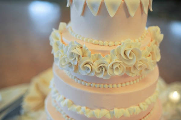 17 Erica Rose Photography Lutz Bakery Sweetchic delicate pink cake 1