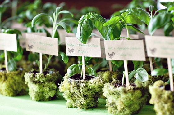 8-potted-herbs-wedding-favors