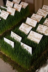 escort card bed of wheat grass sweetchic events