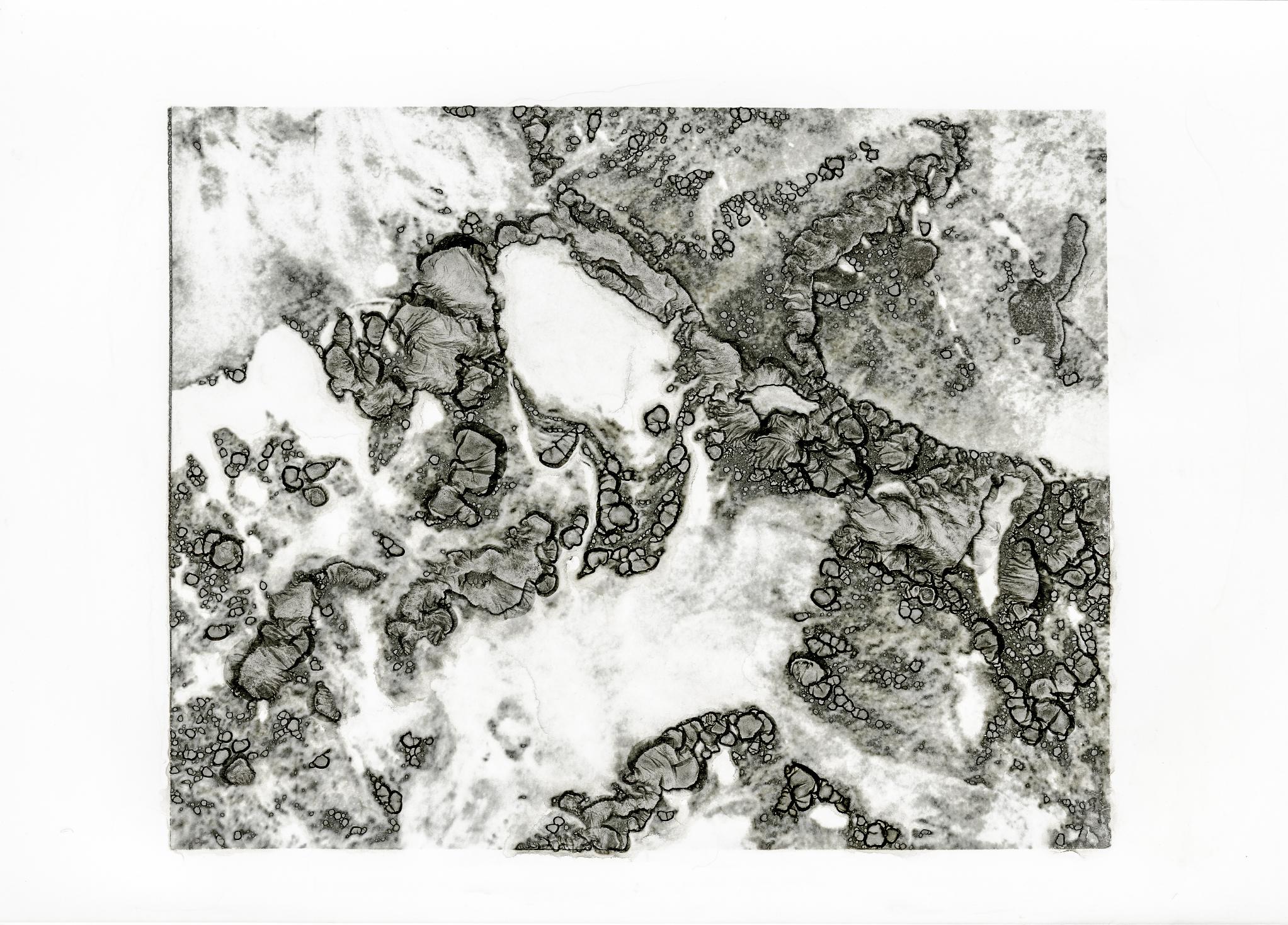 Lyell Glacier Aerial