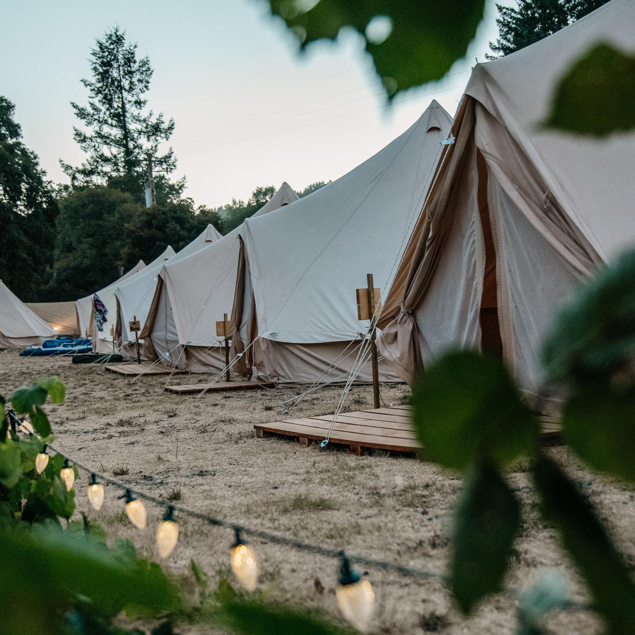 tent_lineup.jpg