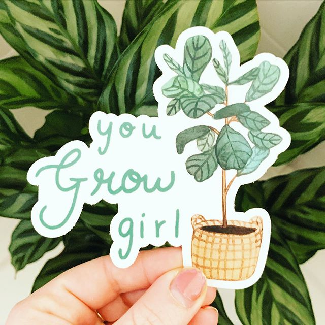 """Allowing myself space to grow today, by staying well hydrated and in indirect lighting indoors 😆🌱 Large """"You Grow Girl"""" stickers are restocked on my Etsy and will be restocked this week at everyone's fav plant shop @foliage.clovis 🌱"""