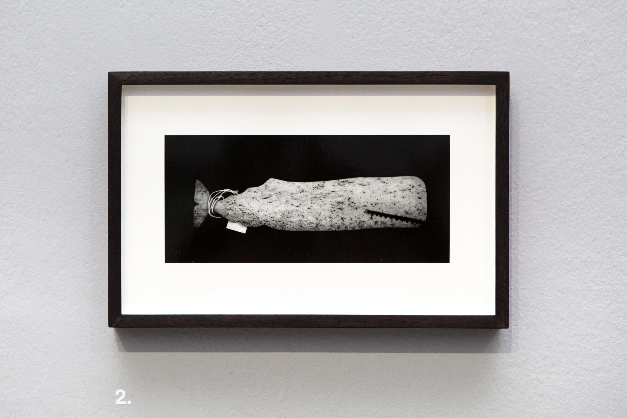 Elephant Atlas_Lewis Bush (28).jpg