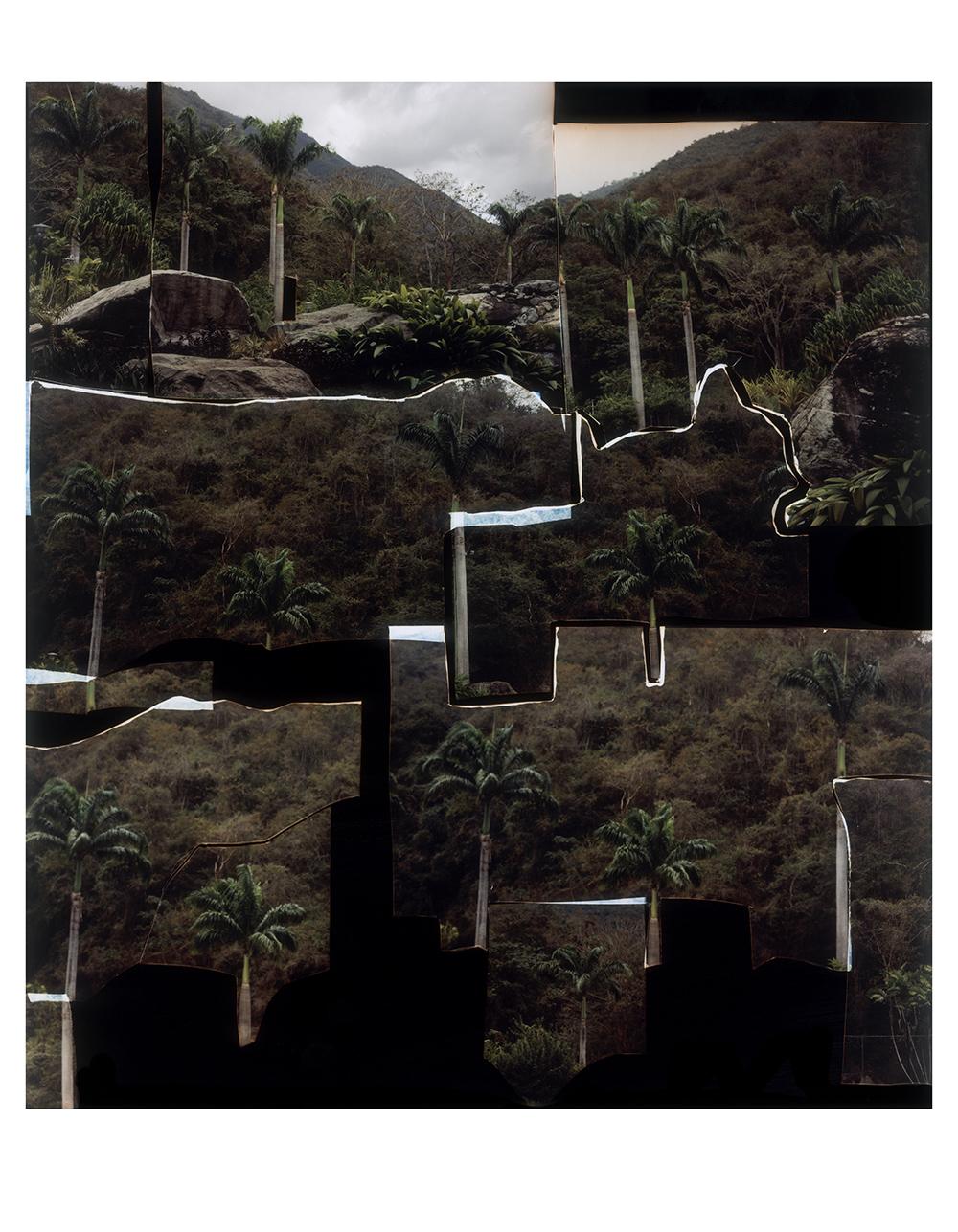 Dafna Talmor: Untitled (VE-080808080808-1)