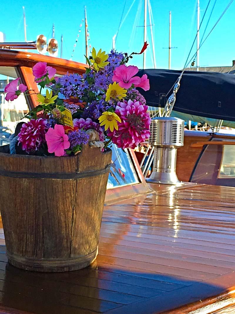 wooden-boat-festival-201516.jpg