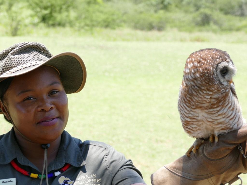 Belinda and the owl