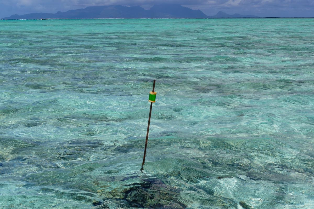 Day 4-5 Tahiti-57.jpg