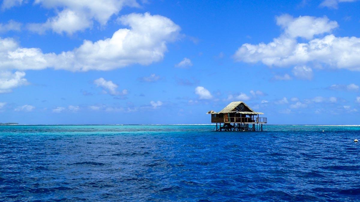 Day 6-7 Tahiti-24.jpg