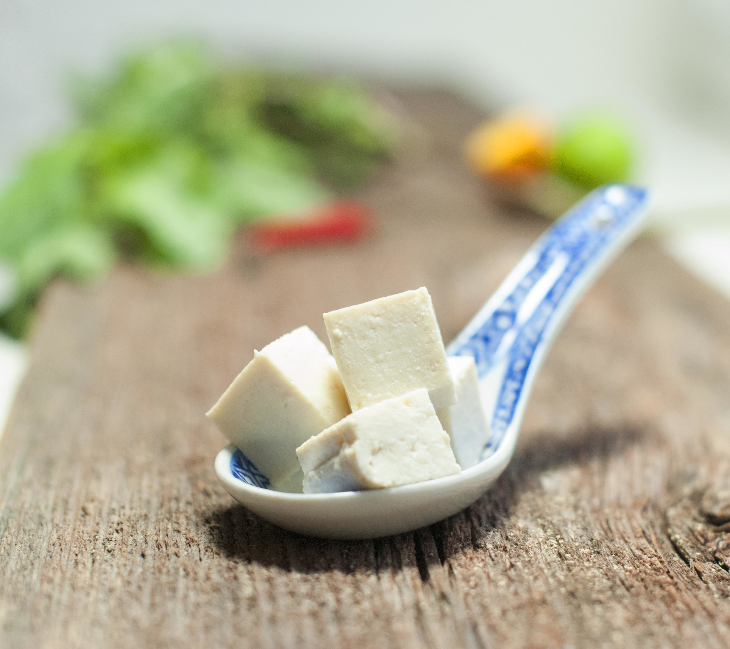 Tofupaloja