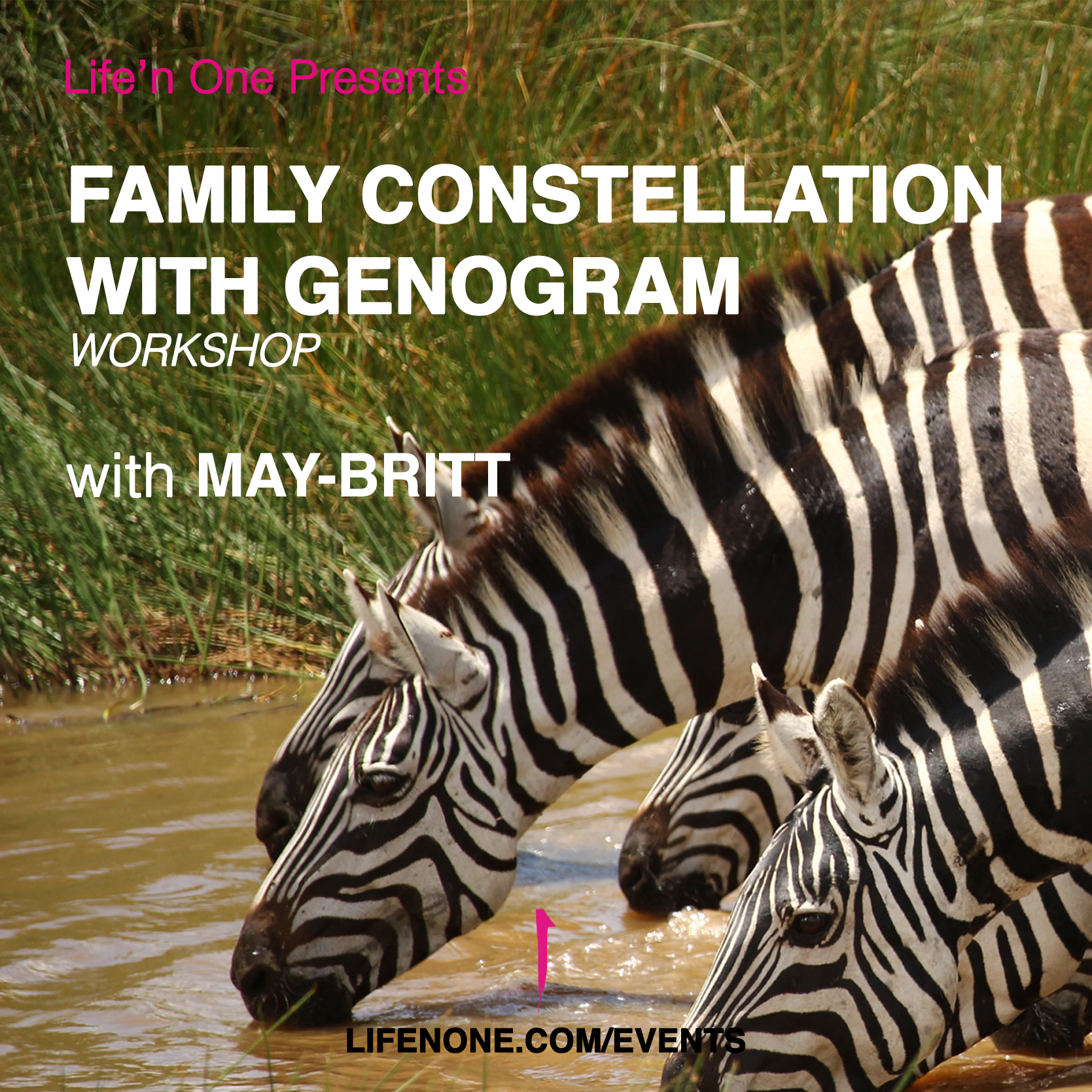Family Constellation with Genogram - Workshop with May Britt