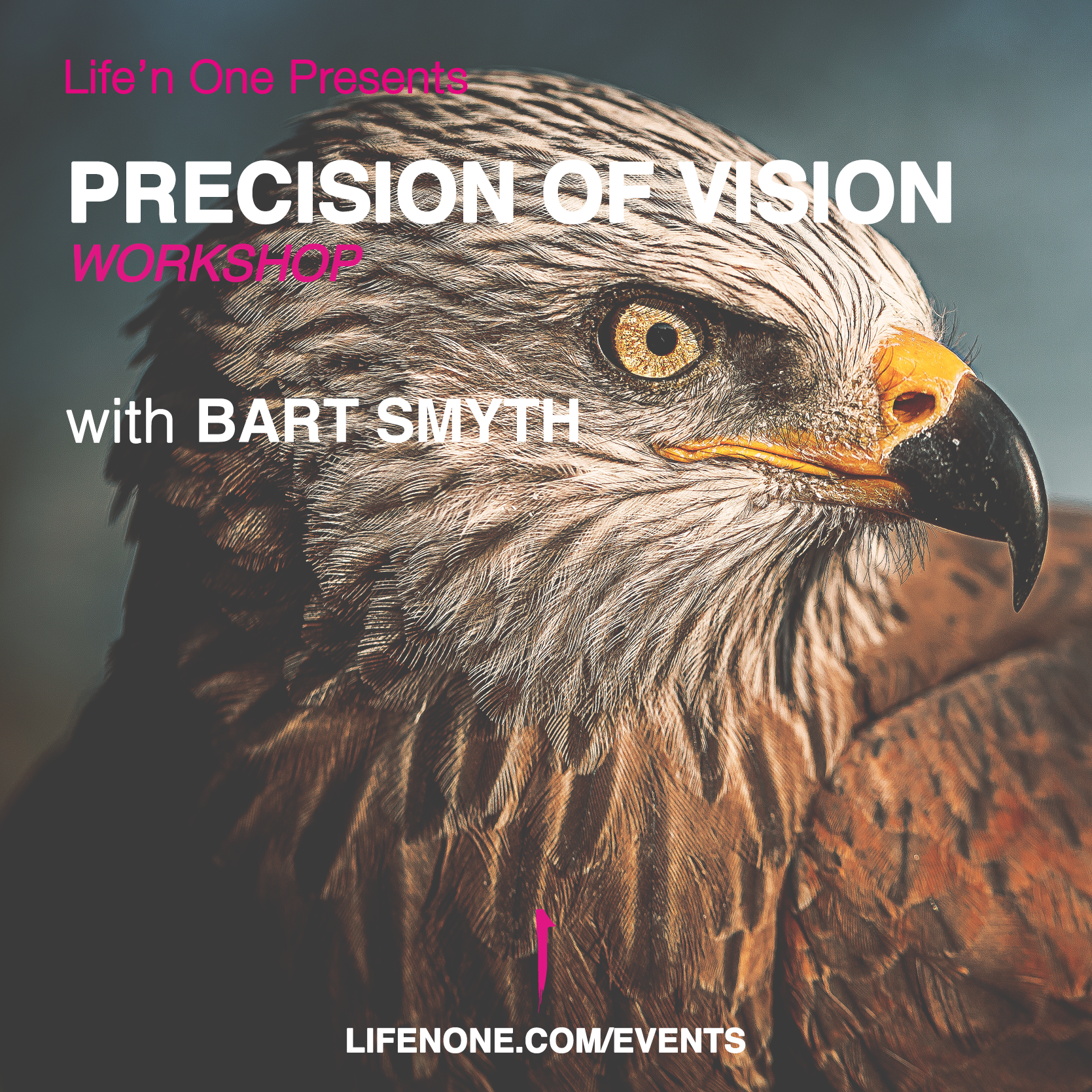 Precision of Vision with Bart Smyth
