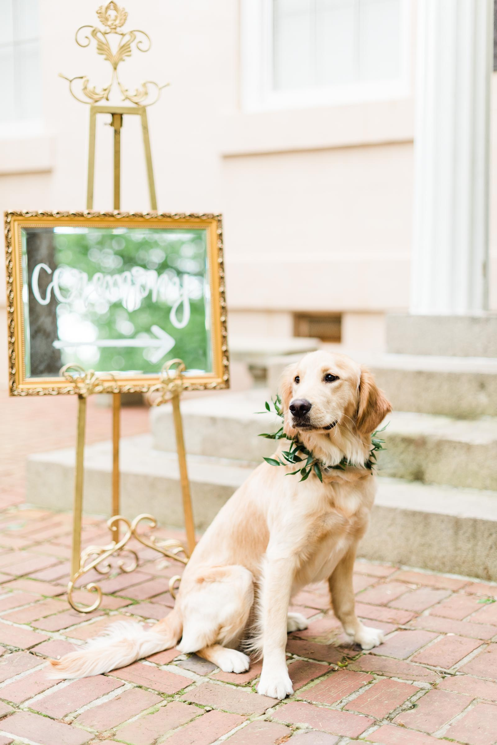 South Carolina Lace House Wedding Markie Walden Photography-47.jpg