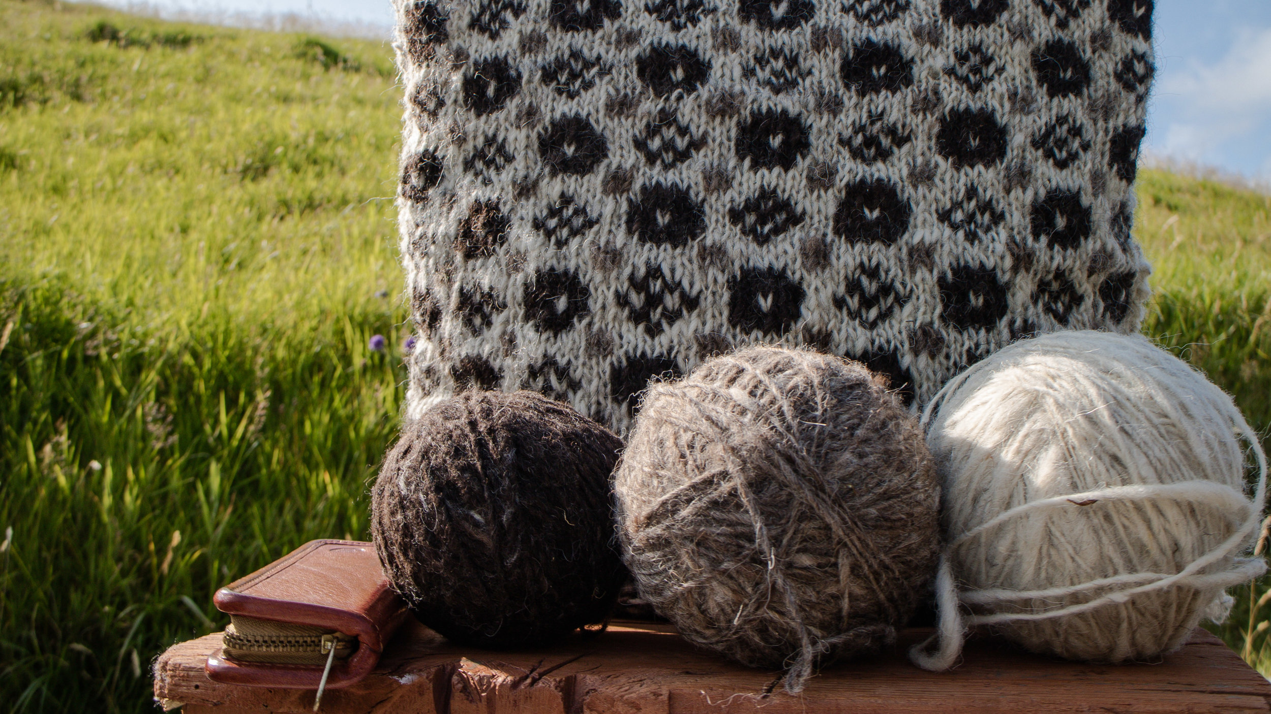Skattakista Unsere Wolle © My Faroe Islands, Anja Mazuhn  (1 von 1).jpg