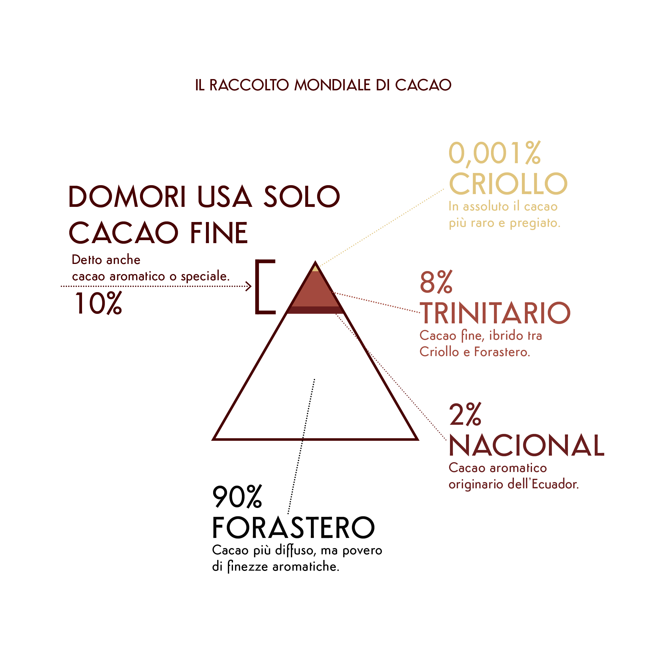 piramide_modificata-01.jpg