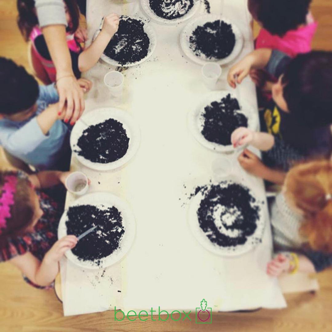 beetbox instagram posts 2 .png
