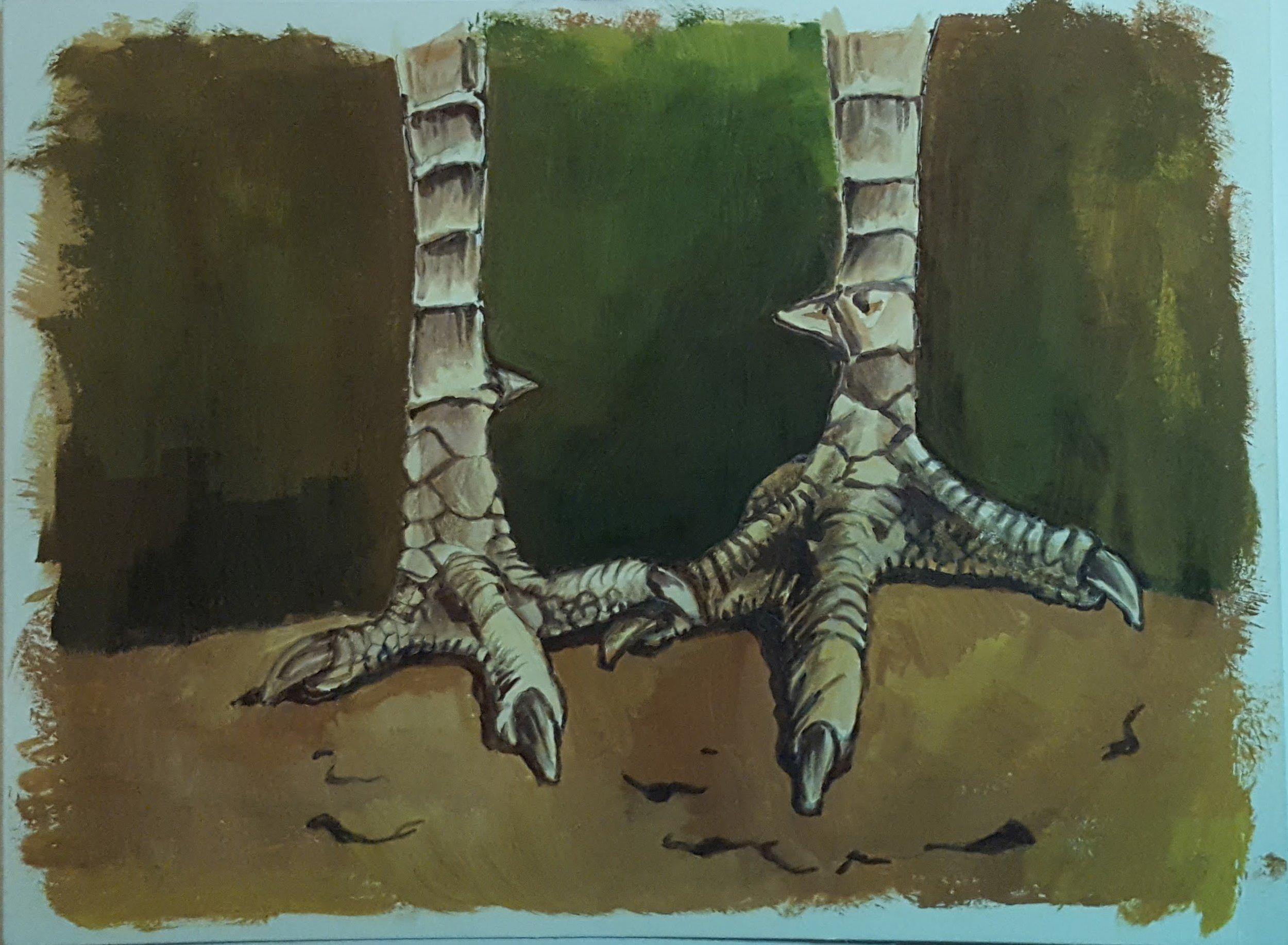 Ostrich feet