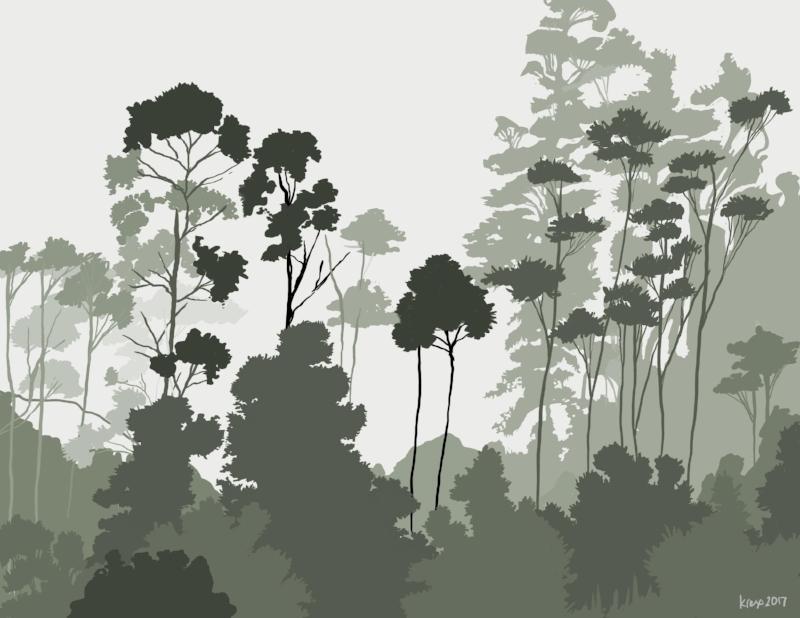 foggy forest flattened.jpg