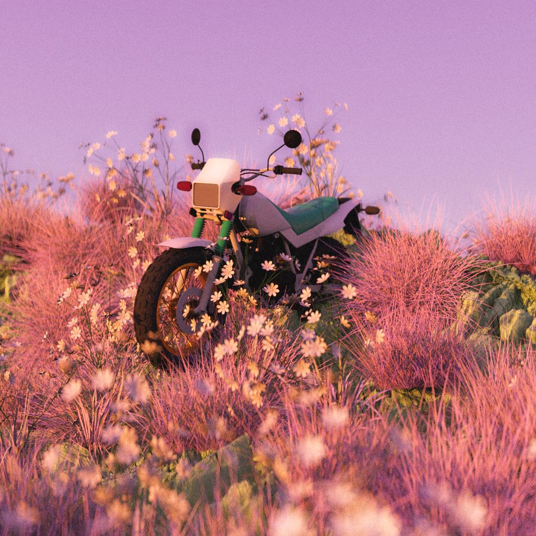 Do Not Disturb_Motorcycle (1).jpg