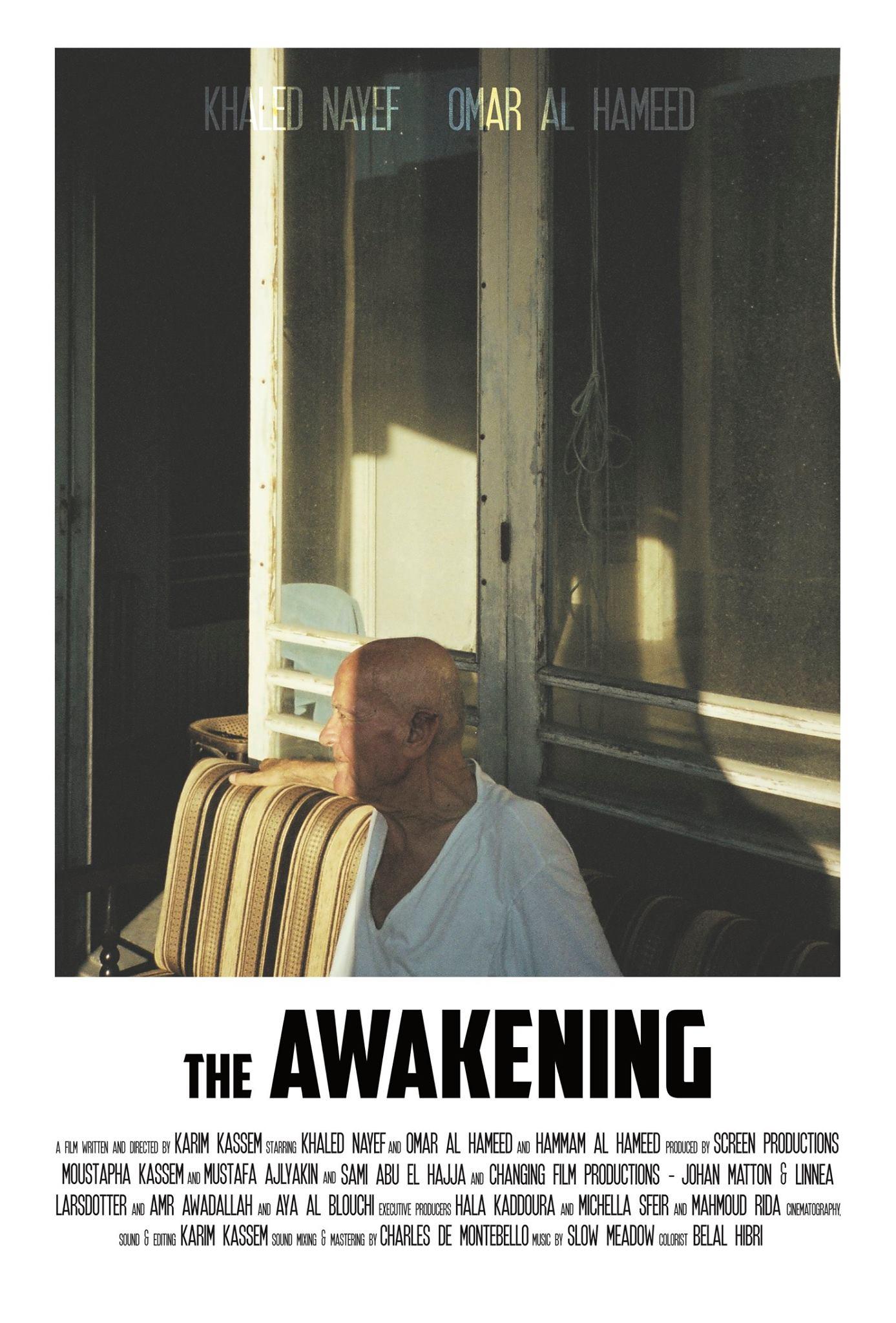 The Awakening on Immigrant Report.jpg