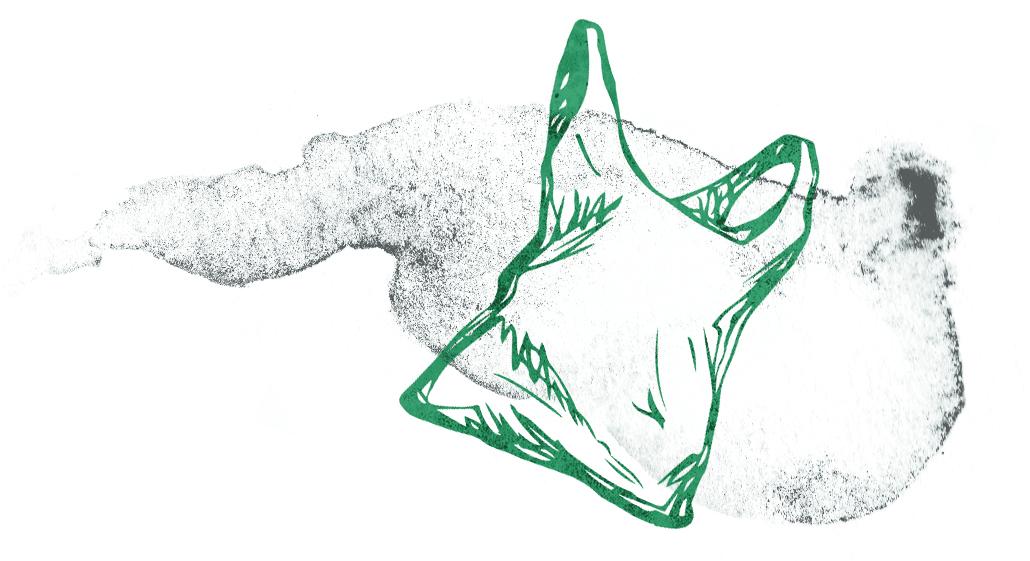 plastic bag graphic.jpg