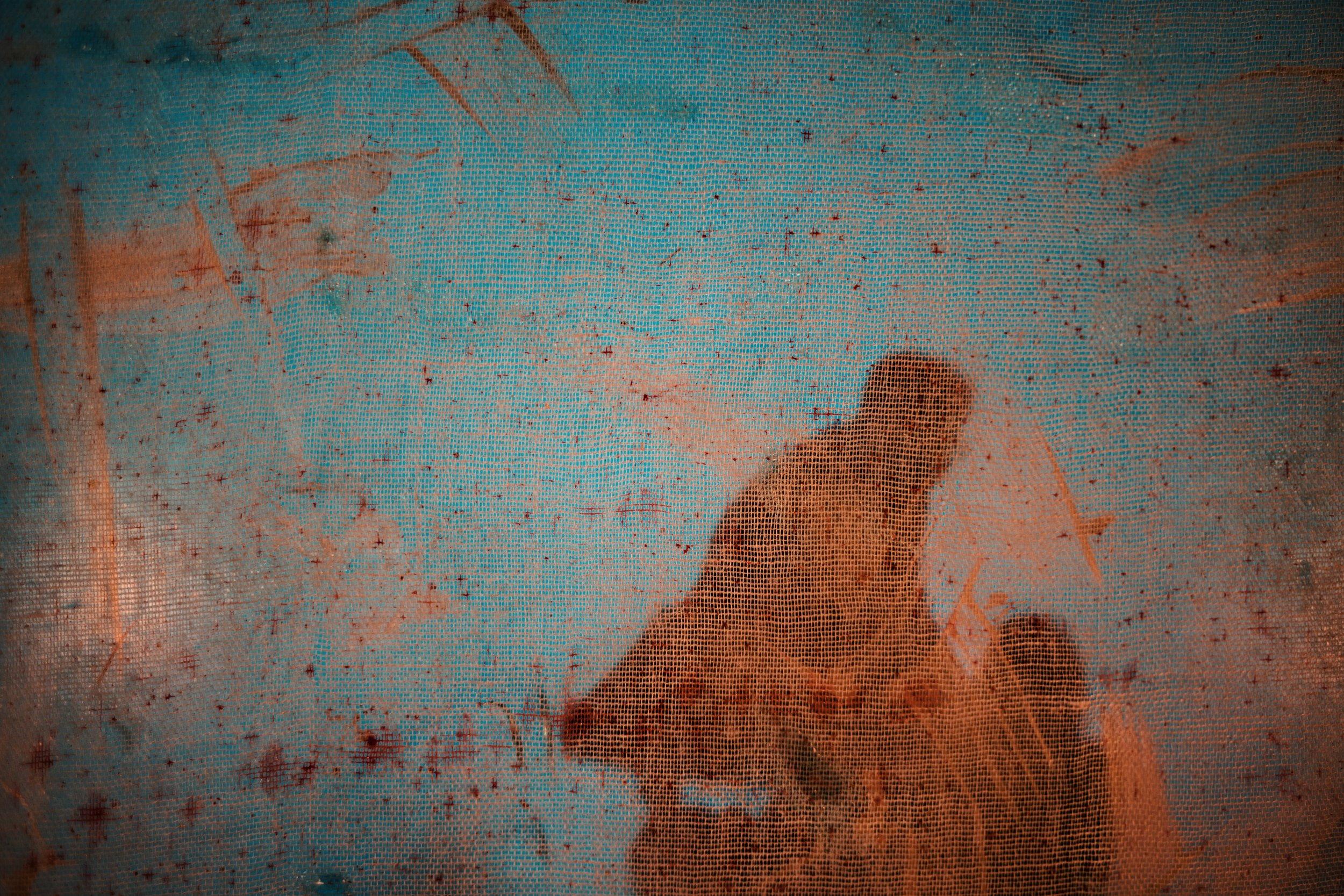 Immigrant Report - Exile Poems - JR Korpa 2.jpg